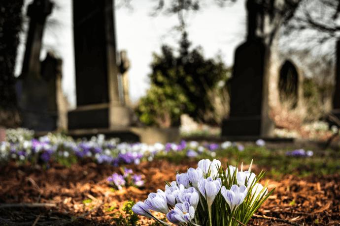 Como é celebrado o dia de finados?