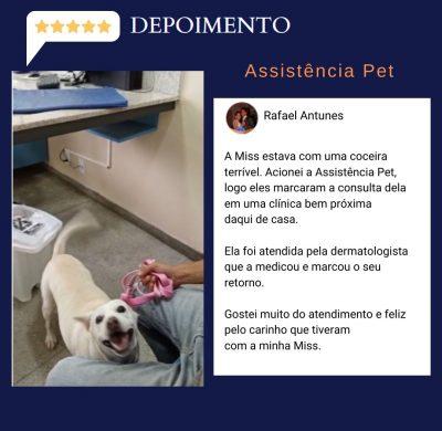 002- Assistencia Pet