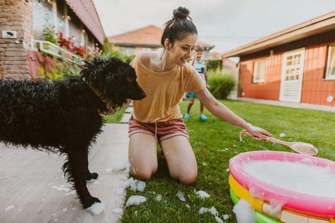 Como dar banho no seu cachorro em casa